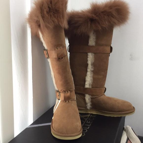 e18d338e6f Australia Luxe Collective Shoes - Australia Luxe Collective Tsar Tall